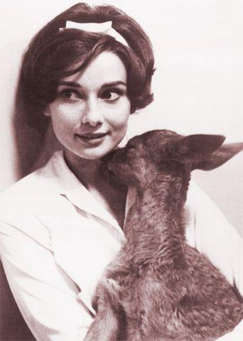 ♥ Vintage Inspiration ♥ Audrey Hepburn