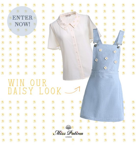 Daisy-Competition-small